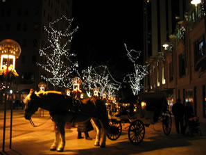 16th Street Horse Carriage